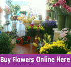 Waterville flower shop