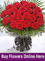 Two dozen red roses by Sillogue florist
